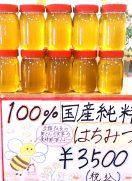 今年も蜂蜜を販売します!